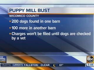 Puppy mill bust in Wicomico County