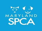 Maryland SPCA teams up with Port Covington
