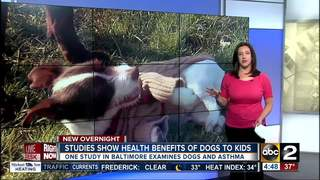 Having a dog around may be healthy for children