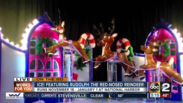 On the Go at Ice- featuring Rudolph the red-nosed reindeer