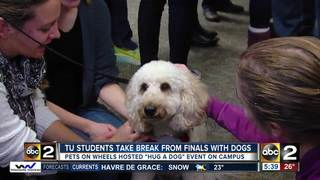 Dogs helped students unwind during finals