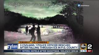 Four men rescued after falling in ice