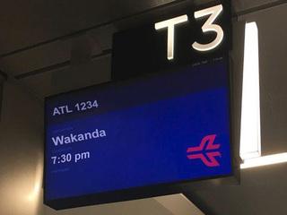 Next flight to Wakanda?
