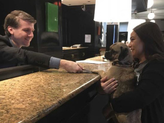 Lord Baltimore Hotel to allow dogs