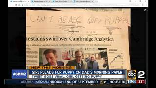 Little girl's plea for a puppy goes viral