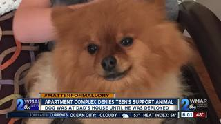 Apartment complex denies boy's support animal