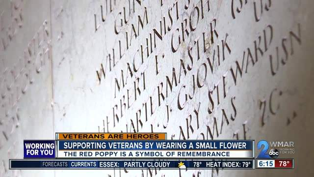 The red poppy the meaning of the flower of remembrance wmar2news the red poppy the meaning of the flower of remembrance mightylinksfo