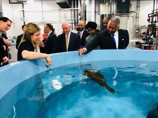 New rescue center opens at National Aquarium