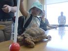 Proton princess gets special day at Aquarium