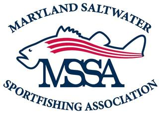 MD fishermen seek fresh start as MSSA flounders