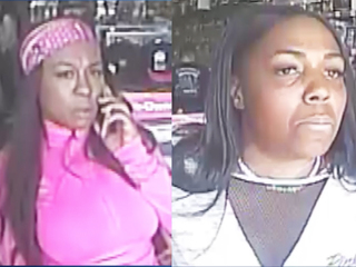 Search for serial Panera Bread purse thieves