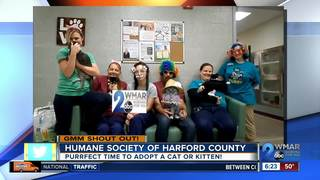Good morning to Humane Society of Harford Co.!
