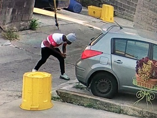 Thieves now targeting this car part