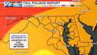 FALL COLORS ARE POPPING-Peak Season