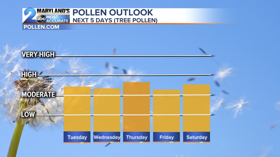 ALLERGY OUTLOOK ABC News WMARTV Baltimore - Us ragweed pollen map
